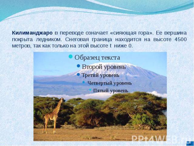 Килиманджаро в переводе означает «сияющая гора». Ее вершина покрыта ледником. Снеговая граница находится на высоте 4500 метров, так как только на этой высоте t ниже 0.