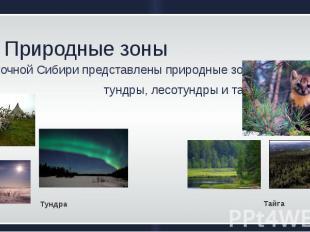 Природные зоны В ВосточнойСибирипредставленыприродныезон