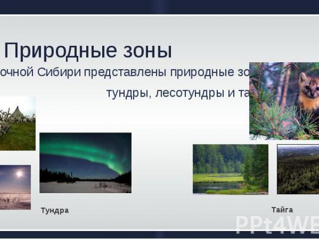 Природные зоны В ВосточнойСибирипредставленыприродныезоны  тундры, лесотундры и тайги .