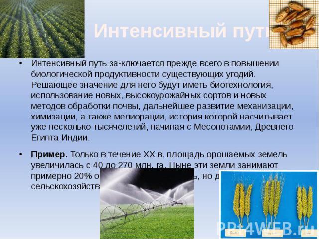 Интенсивный путь Интенсивный путь заключается прежде всего в повышении биологической продуктивности существующих угодий. Решающее значение для него будут иметь биотехнология, использование новых, высокоурожайных сортов и новых методов обработки…