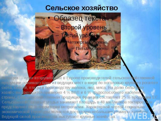 Сельское хозяйство Франция— один из крупнейших в Европе производителей сельскохозяйственной продукции, занимает одно из ведущих мест в мире по поголовью крупного рогатого скота, свиней, птицы и производству молока, яиц, мяса. На долю сельского…