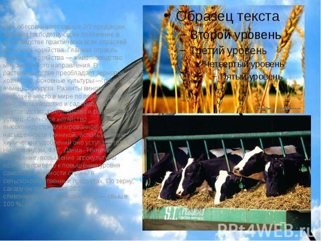 Они обеспечивают свыше 2/3 продукции, занимая господствующее положение в производстве практически всех отраслей сельского хозяйства. Главная отрасль сельского хозяйства— животноводство мясомолочного направления. В растениеводстве преобладает з…