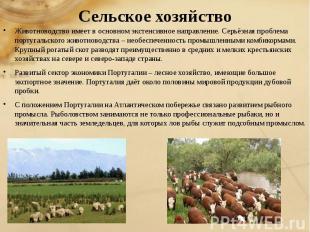 Сельское хозяйство Животноводство имеет в основном экстенсивное направление. Сер