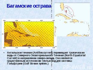 Антильское течение (Antilles current) перемещает тропические воды от Северного Э