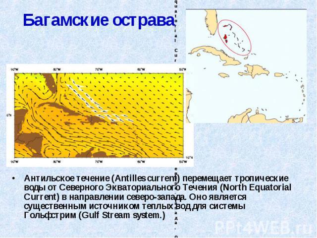 Антильское течение (Antilles current) перемещает тропические воды от Северного Экваториального Течения (North Equatorial Current) в направлении северо-запада. Оно является существенным источником теплых вод для системы Гольфстрим (Gulf Stream system…