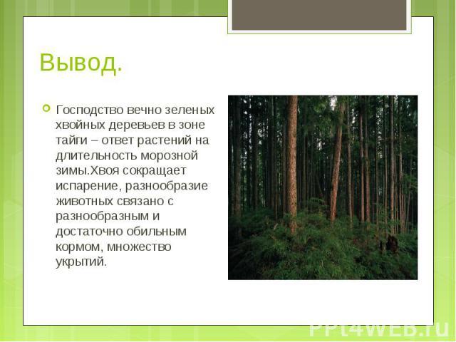 Господство вечно зеленых хвойных деревьев в зоне тайги – ответ растений на длительность морозной зимы.Хвоя сокращает испарение, разнообразие животных связано с разнообразным и достаточно обильным кормом, множество укрытий. Господство вечно зеленых х…