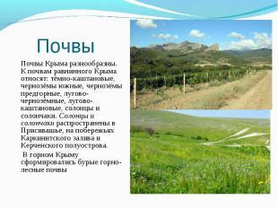 Почвы Крыма разнообразны. К почвам равнинного Крыма относят: тёмно-каштановые, ч