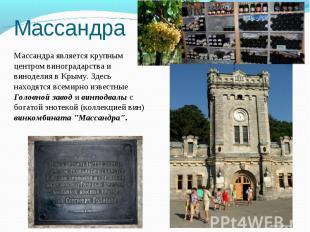 Массандра является крупным центром виноградарства и виноделия в Крыму. Здесь нах