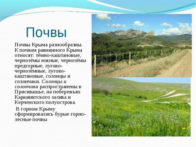 Почвы Крыма разнообразны. К почвам равнинного Крыма относят: тёмно-каштановые, чернозёмы южные, чернозёмы предгорные, лугово-чернозёмные, лугово-каштановые, солонцы и солончаки. Солонцы и солончаки распространены в Присивашье, на побережьях Каркинит…