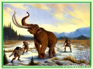 Географическая зональность впервые проявляется 225 - 223 млн.лет назад. В резуль