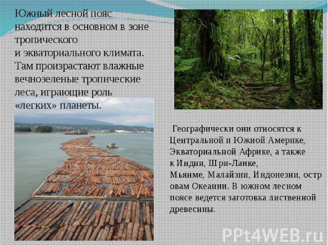 Географическиони относятся к Центральной и Южной Америке, Экваториальной Африке, а также кИндии, Шри-Ланке, Мьянме,Малайзии,Индонезии,островамОкеании. В южном лесном поясе ведется заготовка лиственной древес…