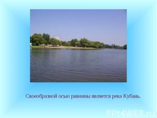 Своеобразной осью равнины является река Кубань. Своеобразной осью равнины являет