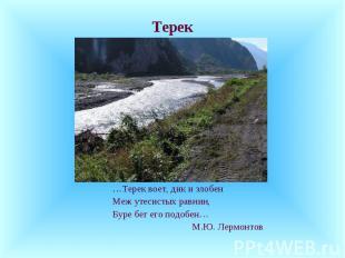 Терек …Терек воет, дик и злобен Меж утесистых равнин, Буре бег его подобен… М.Ю.