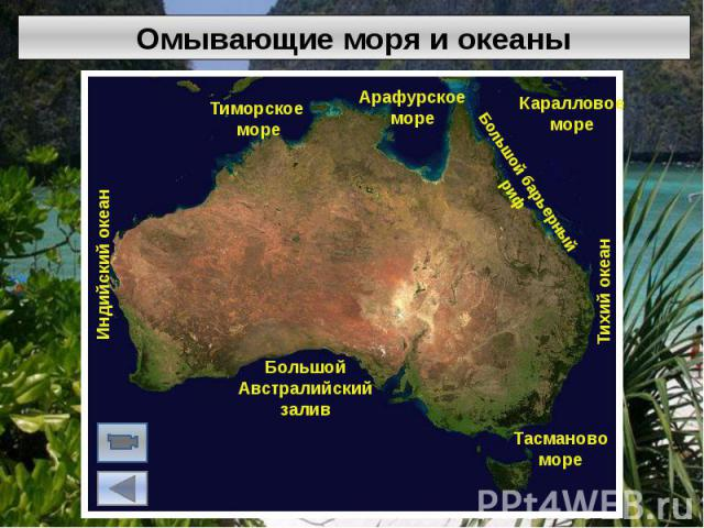 Омывающие моря и океаны