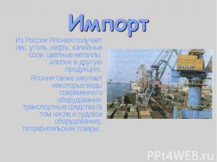 Из России Япония получает лес, уголь, нефть, калийные соли, цветные металлы, хло