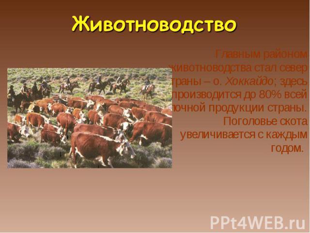 Главным районом животноводства стал север страны – о. Хоккайдо; здесь производится до 80% всей молочной продукции страны. Поголовье скота увеличивается с каждым годом. Главным районом животноводства стал север страны – о. Хоккайдо; здесь производитс…