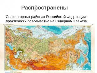 Распространены Сели в горных районах Российской Федерации практически повсеместн