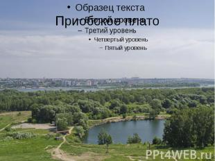 Приобское плато