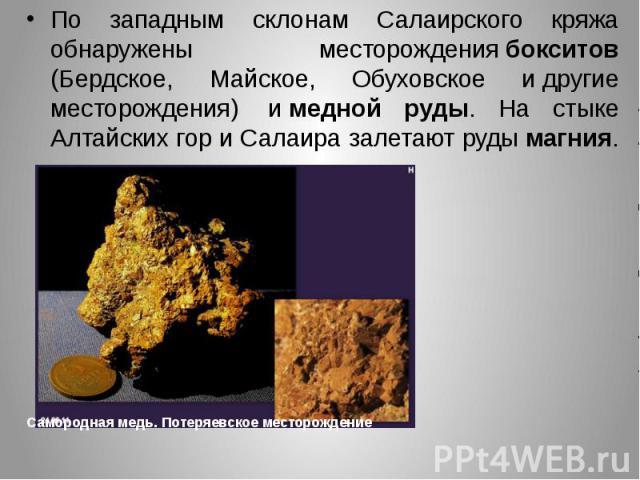 По западным склонам Салаирского кряжа обнаружены месторождениябокситов (Бердское, Майское, Обуховское идругие месторождения) имедной руды. На стыке Алтайских гор и Салаира залетают рудымагния. По западным склонам Салаир…