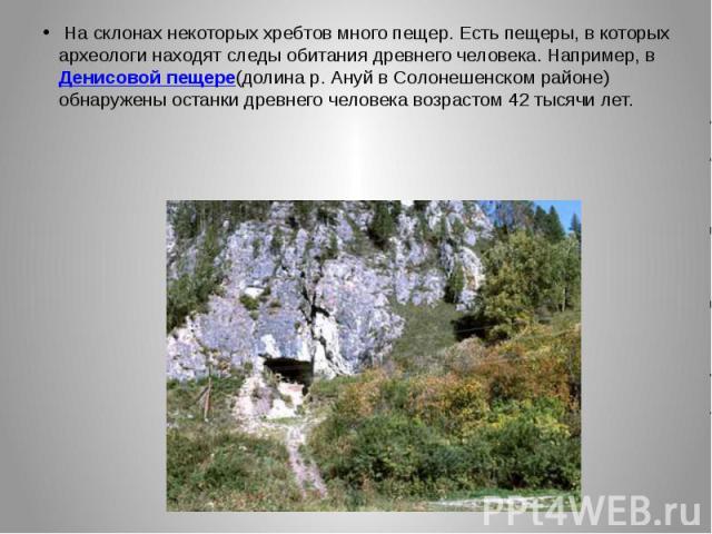 Насклонах некоторых хребтов много пещер. Есть пещеры, вкоторых археологи находят следы обитания древнего человека. Например, вДенисовой пещере(долинар.Ануй вСолонешенском районе) обнаружены останки древнего …
