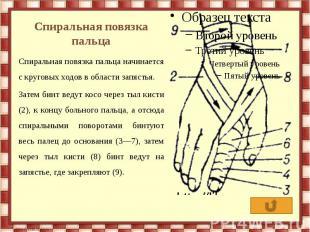 Спиральная повязка пальца Спиральная повязка пальца начинается с круговых ходов