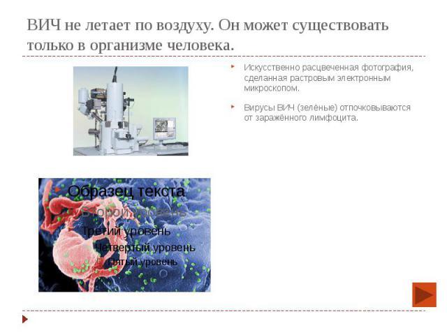 ВИЧ не летает по воздуху. Он может существовать только в организме человека. Искусственно расцвеченная фотография, сделанная растровым электронным микроскопом. Вирусы ВИЧ (зелёные) отпочковываются от заражённого лимфоцита.
