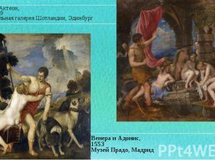 Венера и Адонис, Венера и Адонис, 1553 Музей Прадо, Мадрид