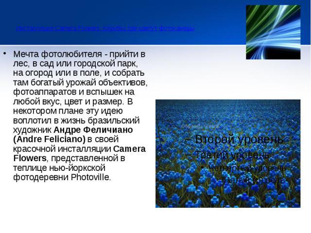 Инсталляция Camera Flowers. Клумбы, где цветут фотокамеры  Мечта фотолюбителя - прийти в лес, в сад или городской парк, на огород или в поле, и собрать там богатый урожай объективов, фотоаппаратов и вспышек на любой вкус, цвет и ра…