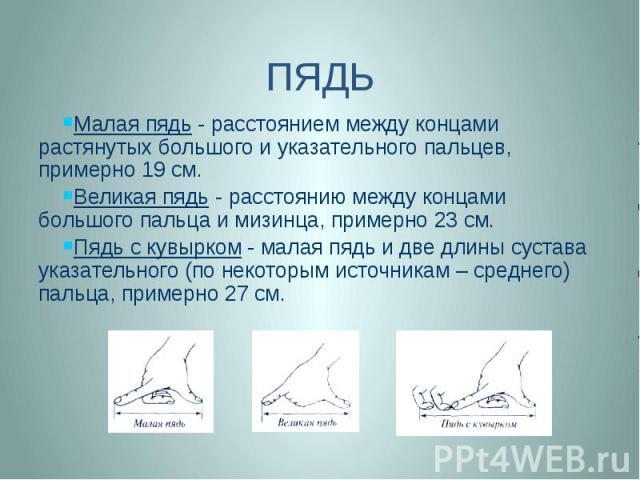 ПЯДЬ Малая пядь - расстоянием между концами растянутых большого и указательного пальцев, примерно 19 см. Великая пядь - расстоянию между концами большого пальца и мизинца, примерно 23 см. Пядь с кувырком - малая пядь и две длины сустава указательног…