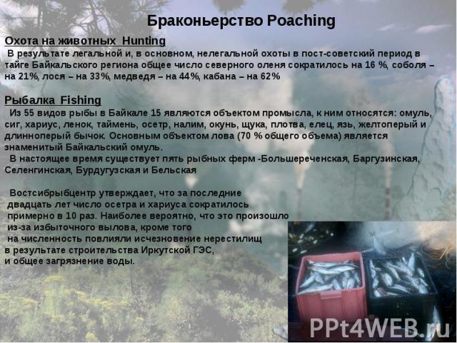 Браконьерство Poaching Браконьерство Poaching