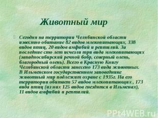 Животный мир Сегодня на территории Челябинской области известно обитание 82 видо