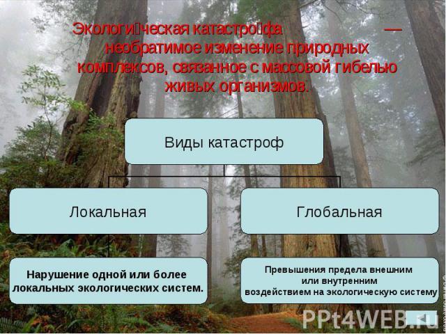 Экологи ческая катастро фа — необратимое изменение природных комплексов, связанное с массовой гибелью живых организмов. Экологи ческая катастро фа — необратимое изменение природных комплексов, связанное с массовой гибелью живых организмов.