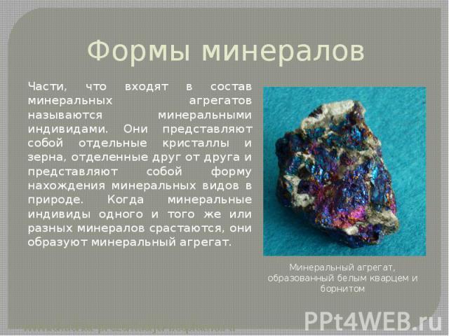 Формы минералов Части, что входят в состав минеральных агрегатов называются минеральными индивидами. Они представляют собой отдельные кристаллы и зерна, отделенные друг от друга и представляют собой форму нахождения минеральных видов в природе. Когд…