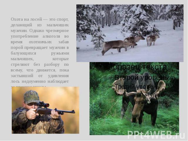 Охота на лосей — это спорт, делающий из мальчишек мужчин. Однако чрезмерное употребление алкоголя во время охотничьих забав порой превращает мужчин в балующихся ружьями мальчишек, которые стреляют без разбору по всему, что движется, пока застывший о…