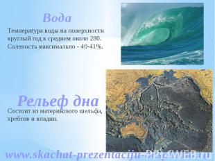 Вода Вода Температура воды на поверхности круглый год в среднем около 280. Солен