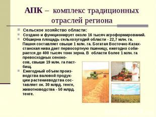 АПК – комплекс традиционных отраслей региона Сельское хозяйство области: Создано