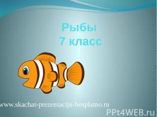 Рыбы 7 класс