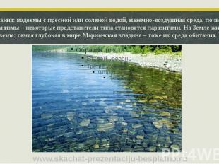 Среда обитания: водоемы с пресной или соленой водой, наземно-воздушная среда, по