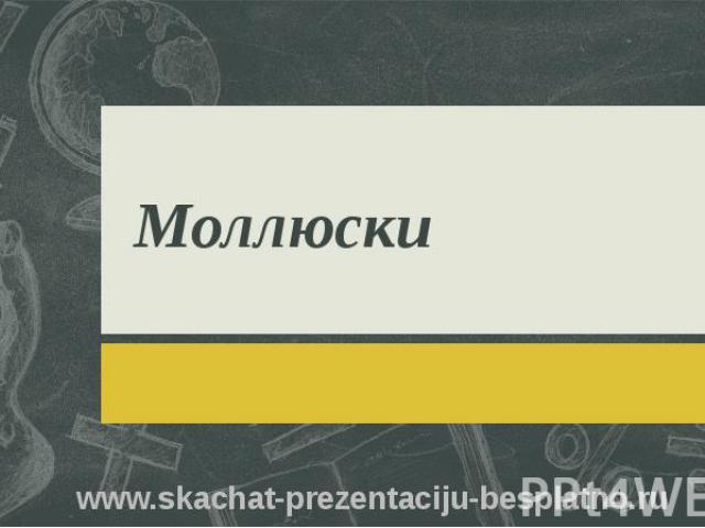 Моллюски www.skachat-prezentaciju-besplatno.ru