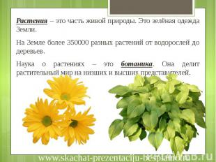 Растения – это часть живой природы. Это зелёная одежда Земли. Растения – это час