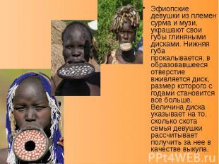 Эфиопские девушки из племен сурма и музи, украшают свои губы глиняными дисками.