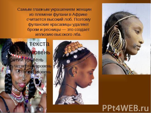 Самым главным украшением женщин из племени фулани в Африке считается высокий лоб. Поэтому фуланские красавицы удаляют брови и ресницы — это создает иллюзию высокого лба.
