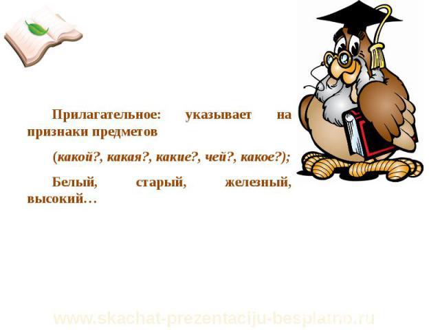 Прилагательное: указывает на признаки предметов Прилагательное: указывает на признаки предметов (какой?, какая?, какие?, чей?, какое?); Белый, старый, железный, высокий…