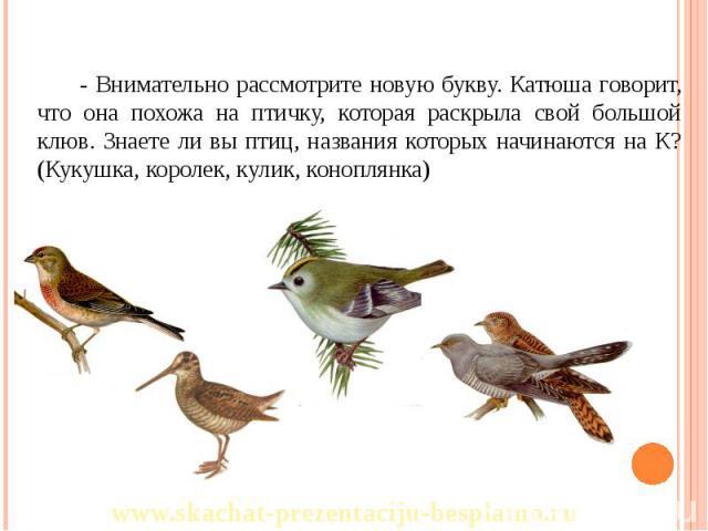 - Внимательно рассмотрите новую букву. Катюша говорит, что она похожа на птичку, которая раскрыла свой большой клюв. Знаете ли вы птиц, названия которых начинаются на К? (Кукушка, королек, кулик, коноплянка) - Внимательно рассмотрите новую букву. Ка…