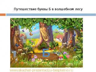 Путешествие буквы Б в волшебном лесу Путешествие буквы Б в волшебном лесу