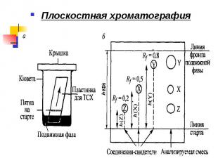 Плоскостная хроматография Плоскостная хроматография