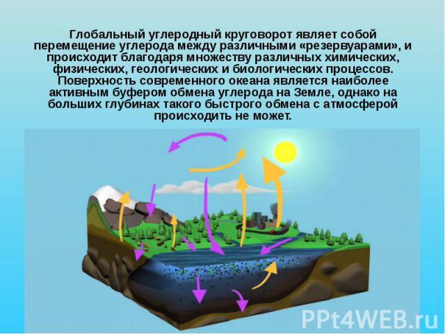 Глобальный углеродный круговорот являет собой перемещение углерода между различными «резервуарами», и происходит благодаря множеству различных химических, физических, геологических и биологических процессов. Поверхность современного океана является …