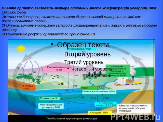 Обычно принято выделять четыре основных места концентрации углерода, это: 1)Атмосфера 2)Наземная биосфера, включающая неживой органический материал, такой как почва и осадочные породы 3) Океаны, которые содержат углерод в растворенном виде и живую и…