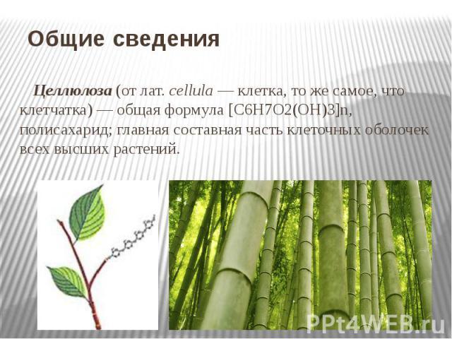 Общие сведения Целлюлоза (от лат.cellula — клетка, то же самое, что клетчатка) — общая формула [С6Н7О2(OH)3]n, полисахарид; главная составная часть клеточных оболочек всех высших растений.