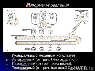 Формы управления Гуморальный механизм использует: Аутокринный (от греч. krino от